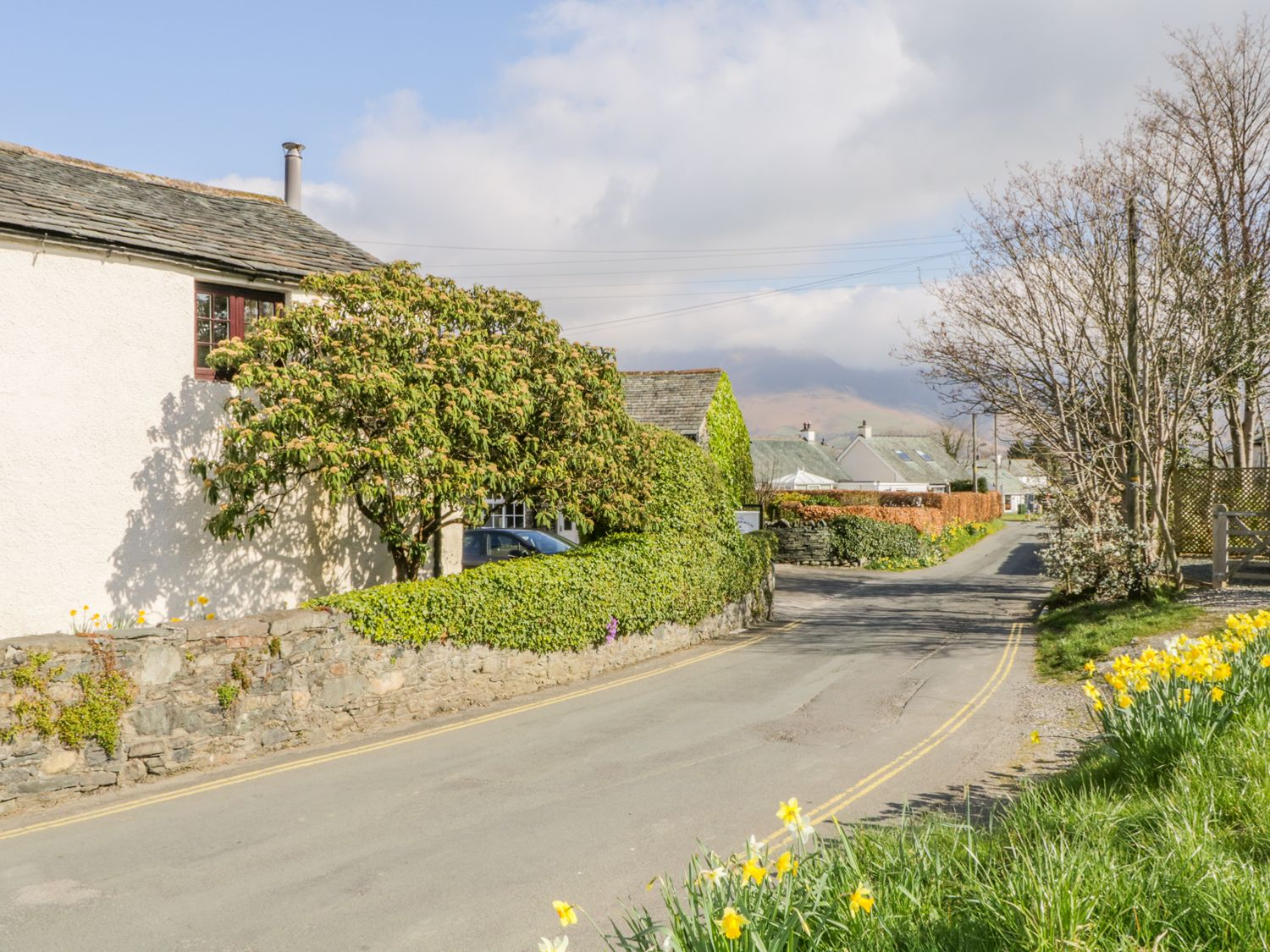Farmhouse Cottage - Lake District - 1004533 - photo 1