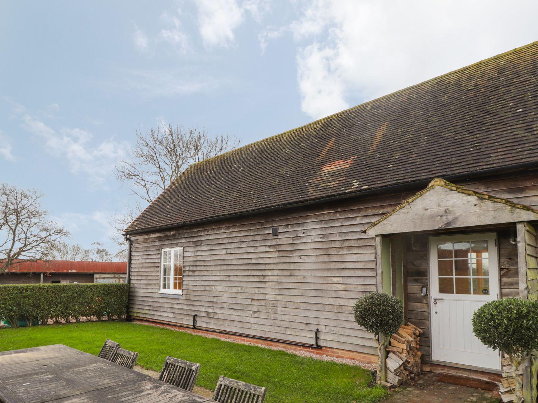 Jasmine - Kent & Sussex - 1062598 - photo 1