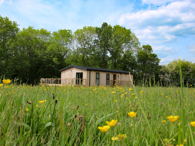 Cedar Lodge - Shropshire - 1064593 - photo 1