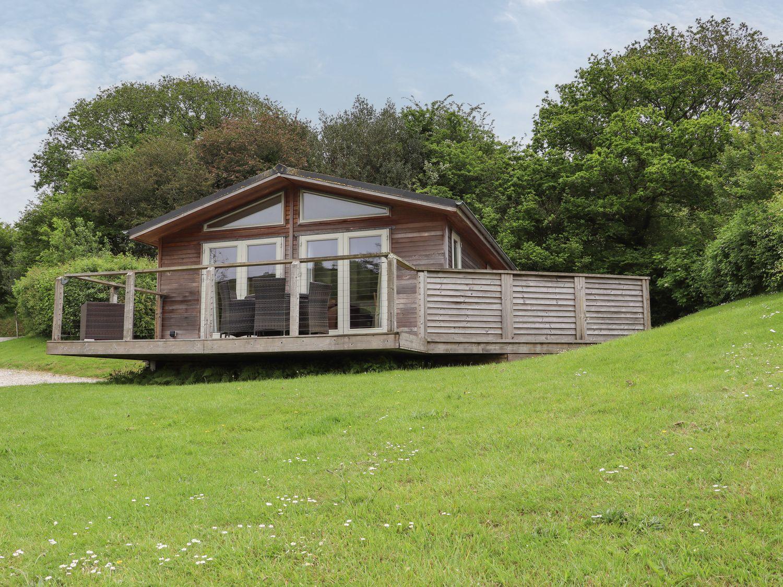 1 Hedgerow - Cornwall - 1077365 - photo 1