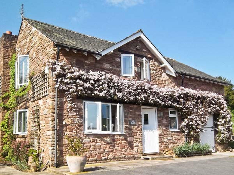 House Martins - Herefordshire - 6770 - photo 1