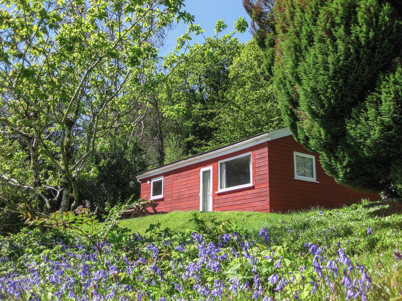 Bluebell Lodge - Cornwall - 962651 - photo 1