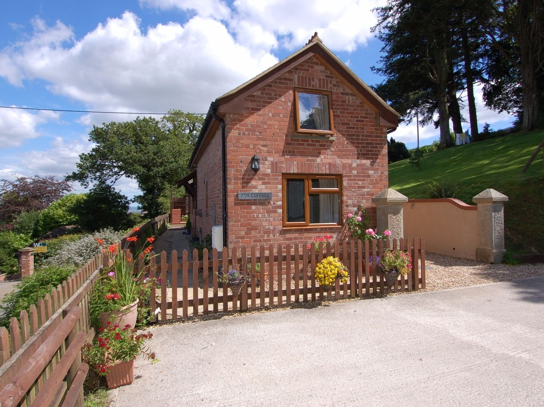 Ash Cottage - Devon - 967284 - photo 1