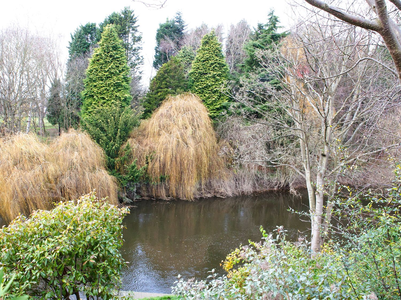 Riverdale - Shropshire - 973818 - photo 1