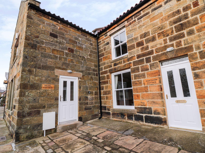 Hazel Cottage - Whitby & North Yorkshire - 993510 - photo 1
