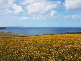 Just Beachy - Cornwall - 1000429 - thumbnail photo 25
