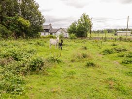 Tom & Mary's Place - Shancroagh & County Galway - 1010224 - thumbnail photo 19