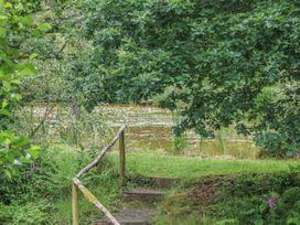 Birch Tree - Devon - 1014743 - thumbnail photo 16