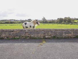 Rhous - Anglesey - 1017106 - thumbnail photo 18