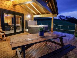 Bryn Eiddon Log Cabin - Mid Wales - 1018963 - thumbnail photo 42