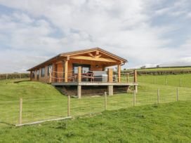 Bryn Eiddon Log Cabin - Mid Wales - 1018963 - thumbnail photo 5