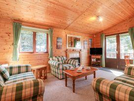 16 Amber Wood Lodge - South Coast England - 1021624 - thumbnail photo 5
