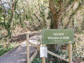 16 Amber Wood Lodge - South Coast England - 1021624 - thumbnail photo 31