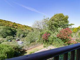 Curlews - Cornwall - 1022002 - thumbnail photo 20