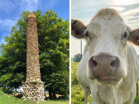 The Calf Barn - Somerset & Wiltshire - 1046659 - thumbnail photo 16