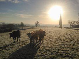 The Calf Barn - Somerset & Wiltshire - 1046659 - thumbnail photo 12