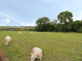 Holmer Farm - Herefordshire - 1049276 - thumbnail photo 19