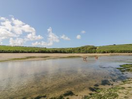 Inner Tide - Cornwall - 1064138 - thumbnail photo 37
