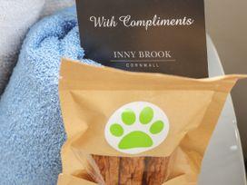 Inny Brook Burrow - Cornwall - 1065057 - thumbnail photo 31