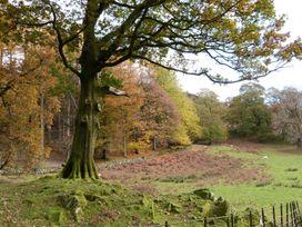 The Oaks 2 - Lake District - 1069062 - thumbnail photo 36