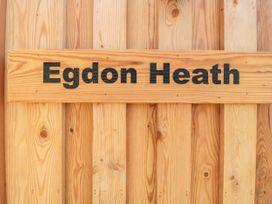 Egdon Heath - Dorset - 1076565 - thumbnail photo 3
