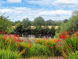 Herons - Herefordshire - 11363 - thumbnail photo 12