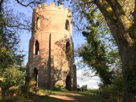 Little Dragons - Somerset & Wiltshire - 11686 - thumbnail photo 14