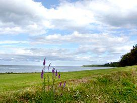 Budle Cove - Northumberland - 2101 - thumbnail photo 7