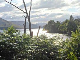 Merlin - Scottish Highlands - 21849 - thumbnail photo 14