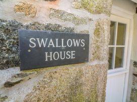 Swallows - Cornwall - 26701 - thumbnail photo 2