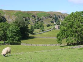 Meadows Edge - Yorkshire Dales - 356 - thumbnail photo 29
