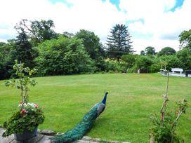 Woodberry - North Wales - 382 - thumbnail photo 17