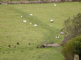 Cnocmor Cottage - Westport & County Mayo - 4462 - thumbnail photo 19