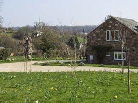 House Martins - Herefordshire - 6770 - thumbnail photo 2
