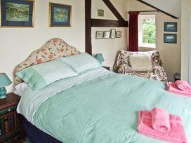 House Martins - Herefordshire - 6770 - thumbnail photo 7