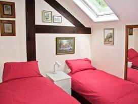House Martins - Herefordshire - 6770 - thumbnail photo 8