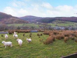 3 Tyn Y Mynydd - North Wales - 8420 - thumbnail photo 13
