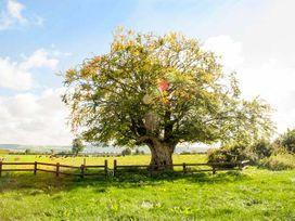 Cherryfield - East Ireland - 904441 - thumbnail photo 24