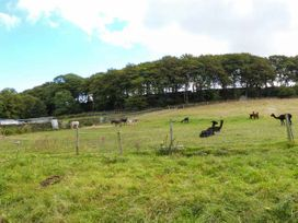 The Old Piggery - Yorkshire Dales - 916394 - thumbnail photo 18
