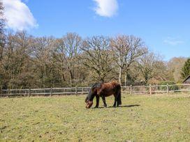 Woodmancote Lodge - Kent & Sussex - 916403 - thumbnail photo 19