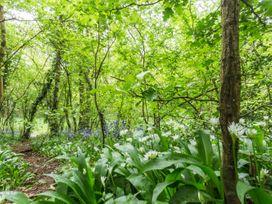 Sunset Cottage - Somerset & Wiltshire - 923628 - thumbnail photo 34