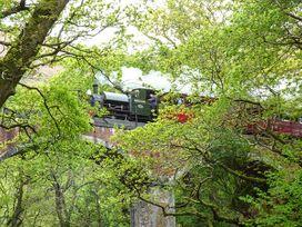 Dolgoch Falls - North Wales - 923966 - thumbnail photo 13