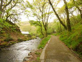 Dolgoch Falls - North Wales - 923966 - thumbnail photo 10