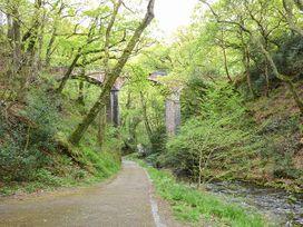 Dolgoch Falls - North Wales - 923966 - thumbnail photo 9