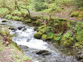 Dolgoch Falls - North Wales - 923966 - thumbnail photo 12