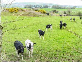 The Lodge - Kinsale & County Cork - 933597 - thumbnail photo 18