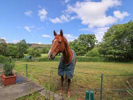 Ty Gwyn - Mid Wales - 940757 - thumbnail photo 23