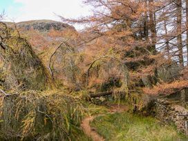 Beech - Woodland Cottages - Lake District - 942520 - thumbnail photo 20