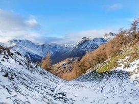 Beech - Woodland Cottages - Lake District - 942520 - thumbnail photo 23