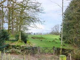Elm - Woodland Cottages - Lake District - 951726 - thumbnail photo 22